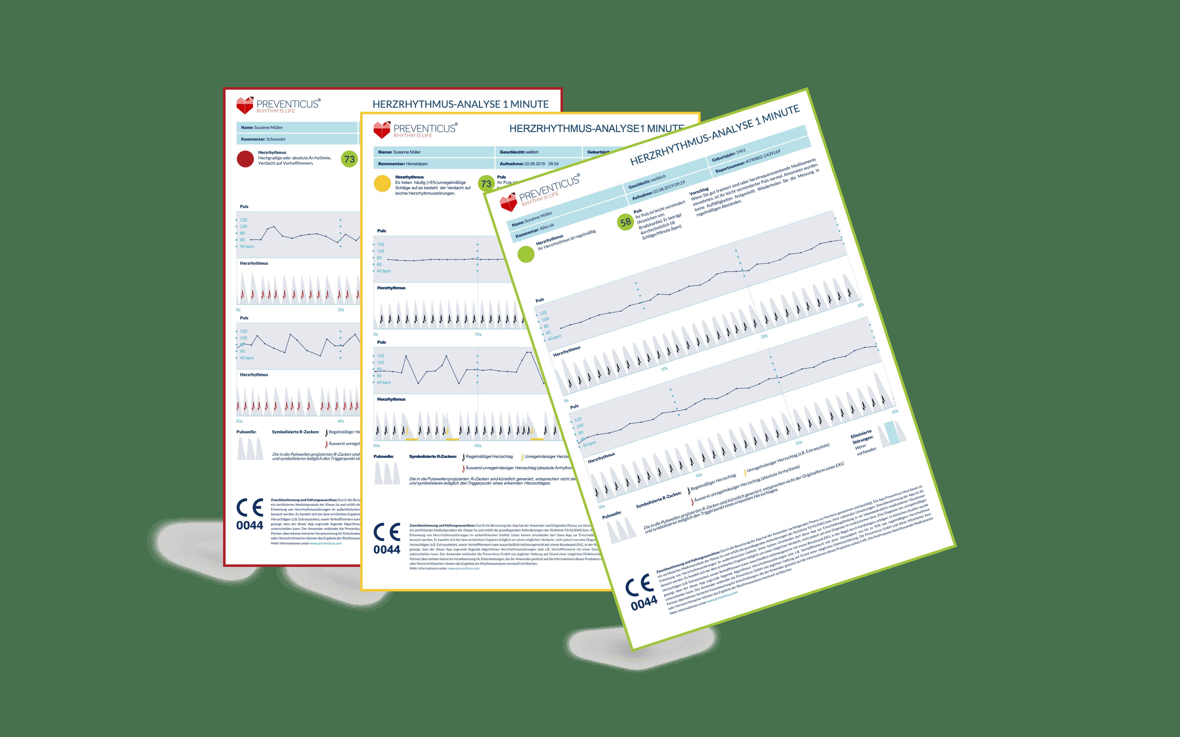 Komposition_Igel_PDF_Report_de